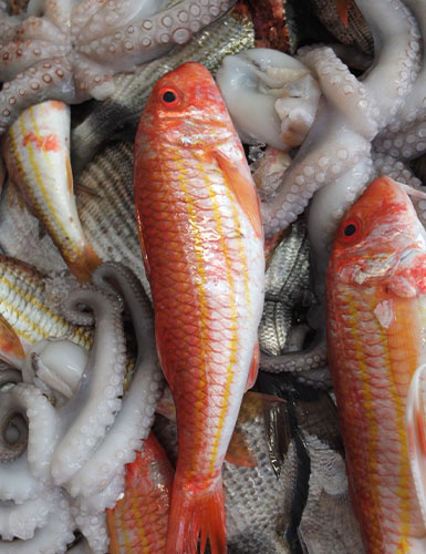 Ristorante da Nicola, Specialità Pugliesi a base di pesce - Torre a Mare, Bari
